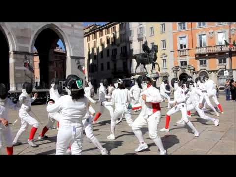 video-screenshot/fencing-mob-pc_1601303785.jpg